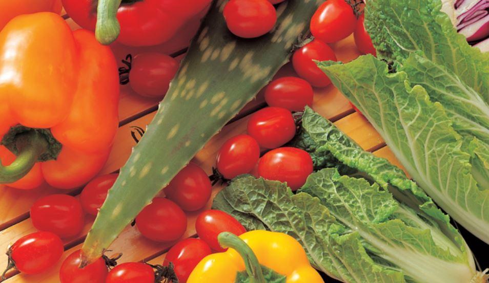 Sonhar com legumes: Significado, Interpretação