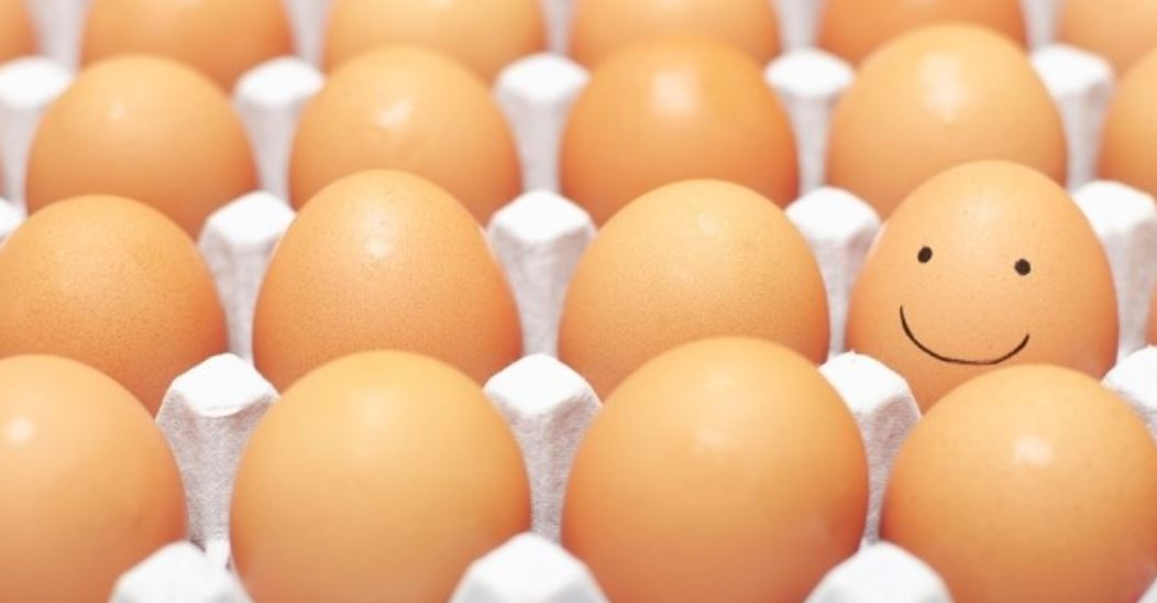 Sonhar com ovo: Significado, Interpretação