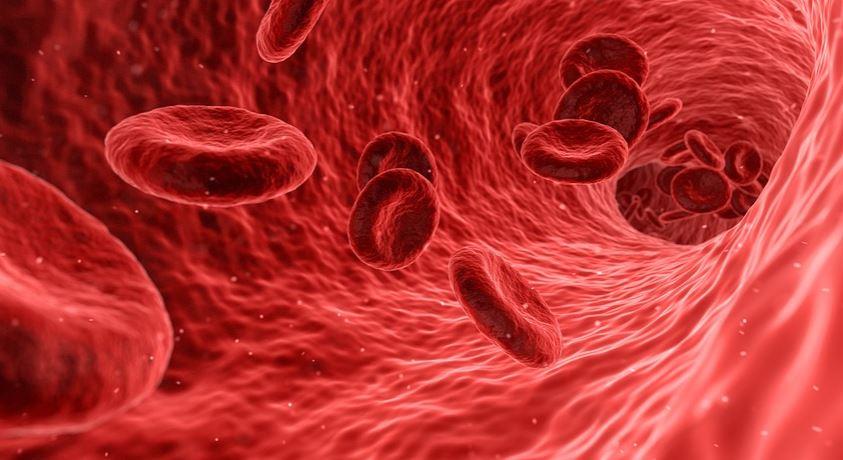 sangramento