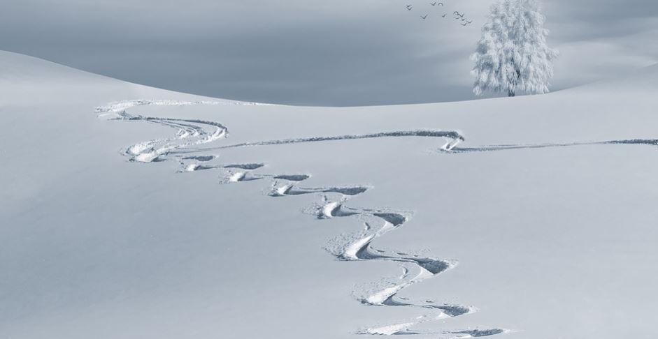 Sonhar com neve: Significado e interpretação de sonhos
