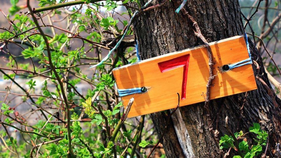 Significado do Número 7: Numerologia sete