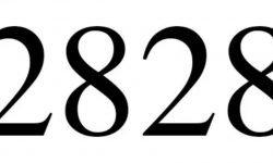 Significado do número 2828: Numerologia Dois mil oitocentos e vinte e oito