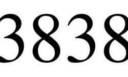 Significado do número 3838: Numerologia Três mil oitocentos e trinta e oito