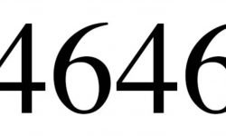 Significado do número 4646: Numerologia Quatro mil seiscentos e quarenta e seis