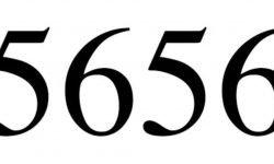 Significado do número 5656: Numerologia Cinco mil seiscentos e cinquenta e seis