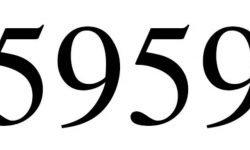 Significado do número 5959: Numerologia Cinco mil novecentos e cinquenta e nove