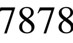 Significado do número 7878: Interpretação da numerologia