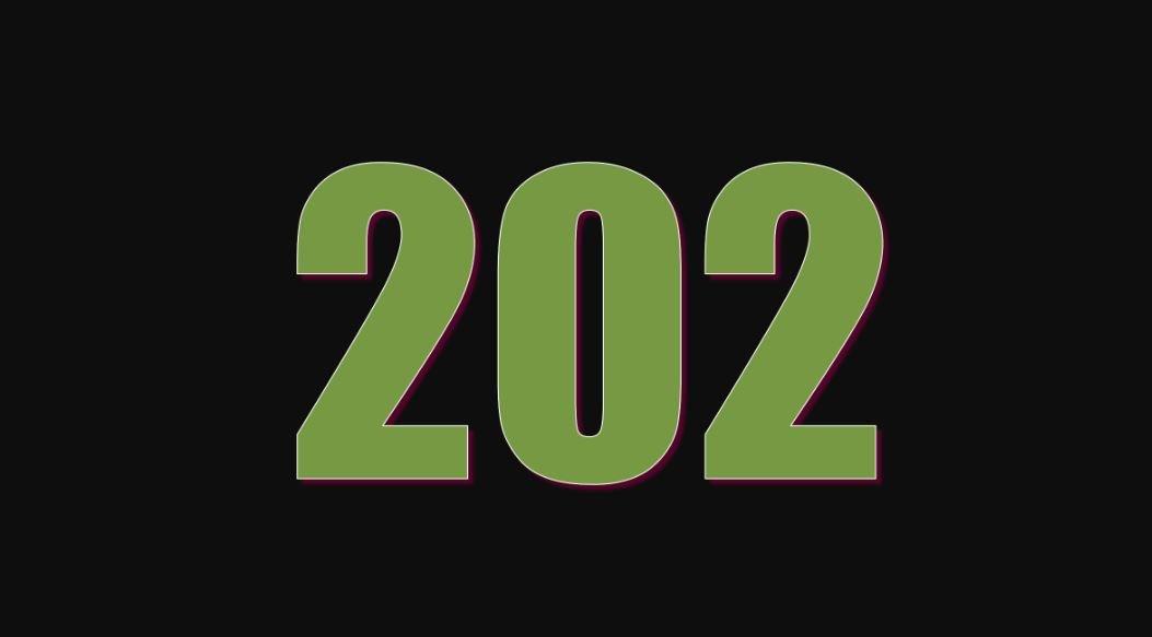 Significado do número 202