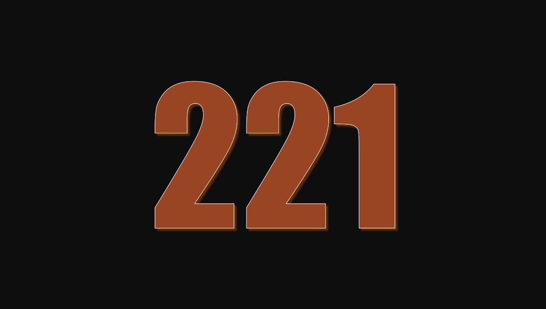Significado do número 221