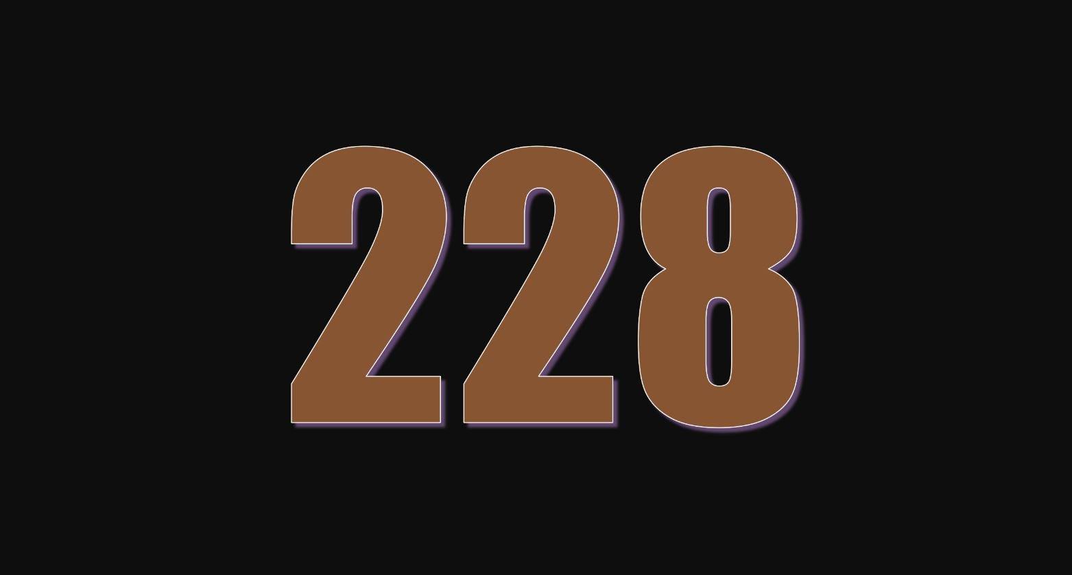 Significado do número 228