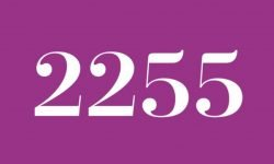 Significado do número 2255: Interpretação da numerologia