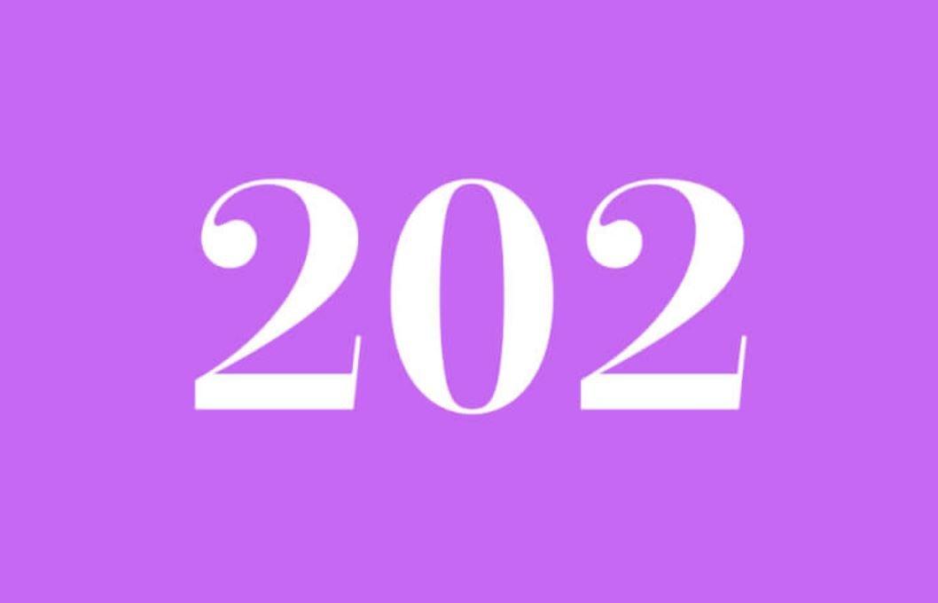Anjo Número 202