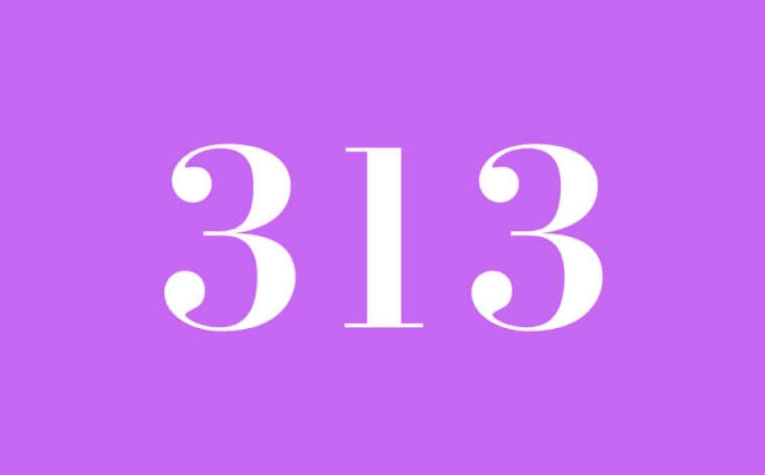 Anjo Número 313