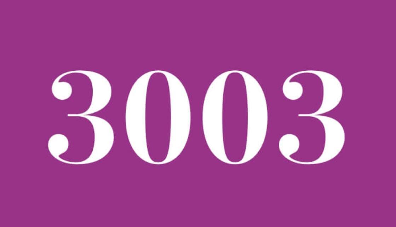 Anjo Número 3003