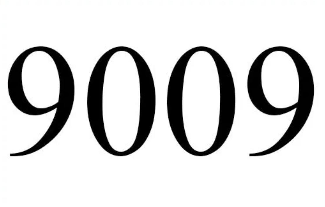 Anjo Número 9009