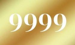 Anjo Número 9999: Mensagem dos Anjos