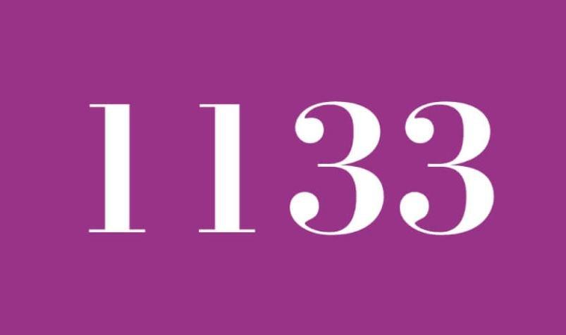 Anjo Número 1133