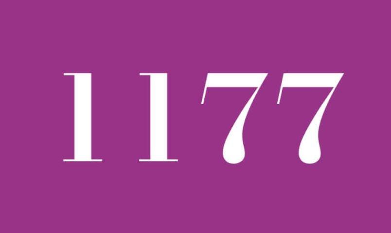 Anjo Número 1177