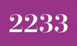 Anjo Número 2233: Mensagem dos Anjos