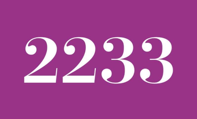 Anjo Número 2233