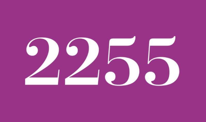 Anjo Número 2255