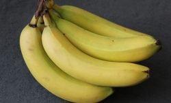 Banana: 29 propriedades e benefícios para a saúde