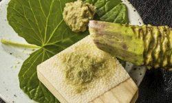 Wasabi: 10 benefícios e propriedades para a saúde